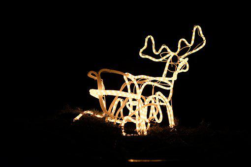 Background, Christmas, Advent, Reindeer, Lights