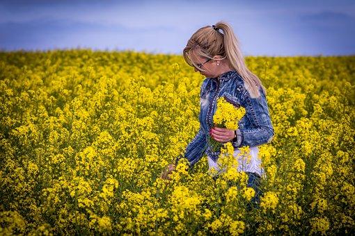 Field, Flower, Nature, Hayfield, Summer, Landscape