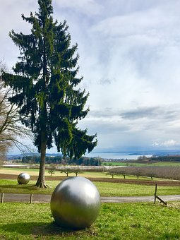 Tree, Ball, Meadow, Lake Constance, About, Nature
