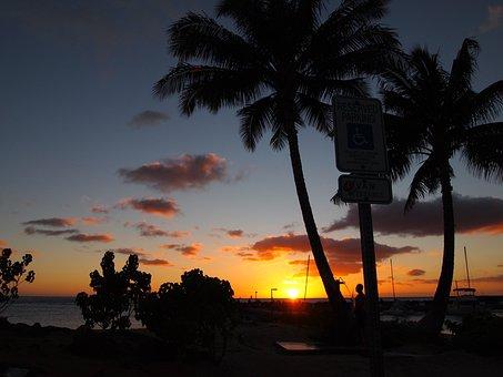 Beach, Palmae, Tropical, Sun, Nightfall, Twilight
