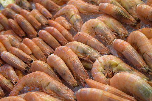 Food, Market, Desktop, Healthy, Closeup, Shrimp, Tasty
