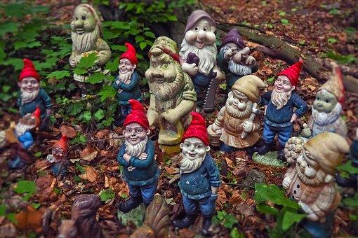 Dwarfs, Garden Gnomes, Flowers Dwarf, Funny, Cute