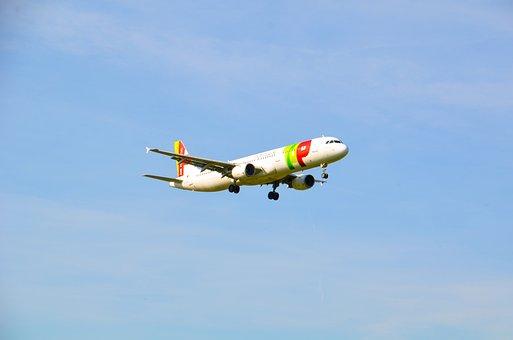 Aircraft, Jet, T, Travel, Flight, Portugal