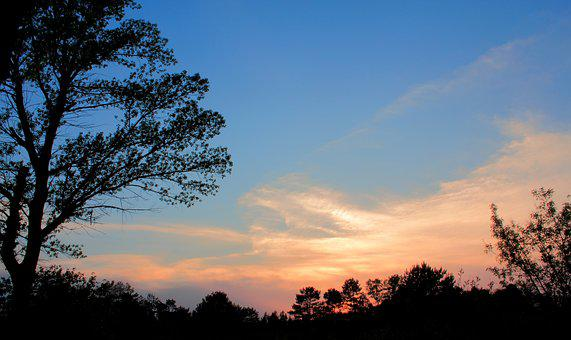 Nature, Tree, Dawn, Outdoors, Panoramic, Landscape, Sky