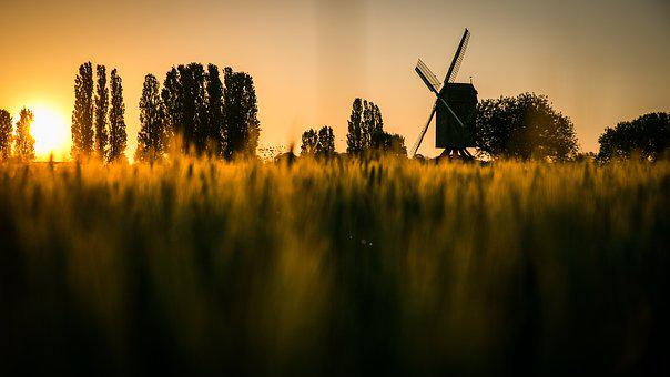 Sunset, Dawn, Evening, Landscape, No Person, Mill