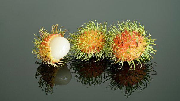 Rambutan, Fruit, Tree, Tropical, Thailand, Edible