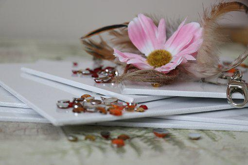 Still Life, Desktop, Flower, Pink, White, Accessories