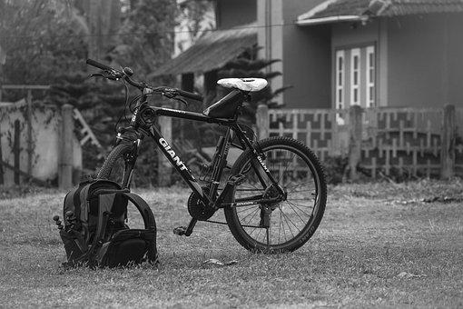 Bike, Gear, Giant, Cycle, Biking, Mountain, Equipment