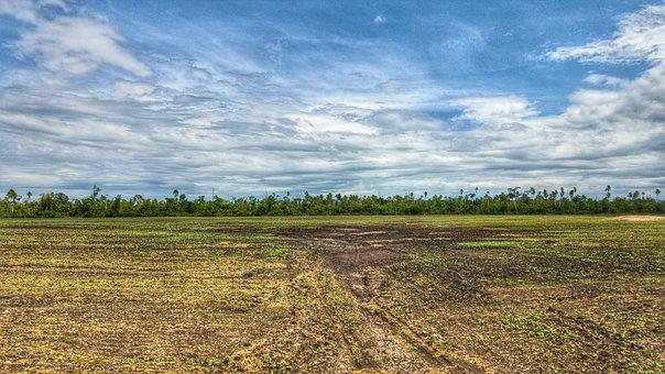 Panoramic, Nature, Landscape, Sky, Field, Agriculture