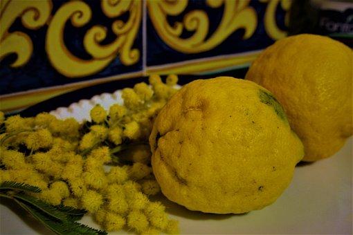 Food, Healthy, Refreshment, Gourmet, Lemon, Mimosa, 8