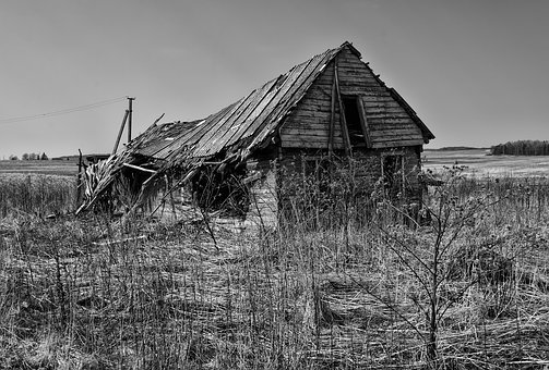 Barn, Abandoned, Farm, Nature, Rustic