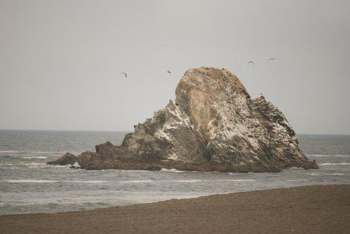 Sea, Seashore, Water, Ocean, Beach, Nature, Landscape