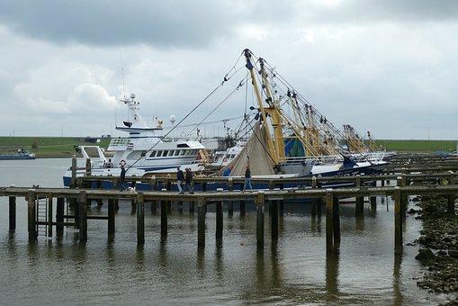 Port, Fisheries, Fishing Boats, Stellendam, Sea, Boat