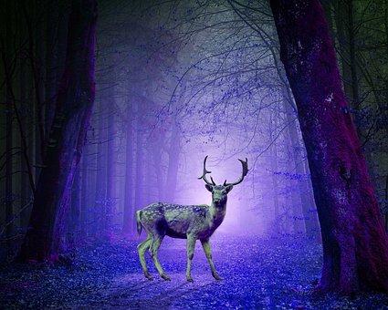 Psychedelic, Deer, Art, Painting, Nature, Wildlife