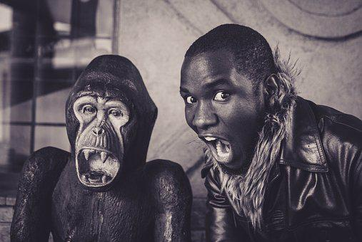 People, Portrait, Adult, Two, Man, Art, Leader, Gorilla