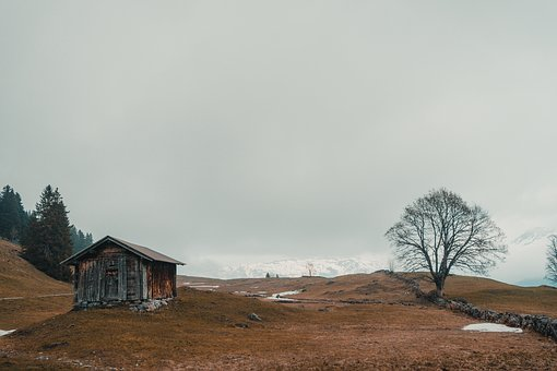 Landscape, Barn, Horizontal Plane, Nature, Tree, Shed
