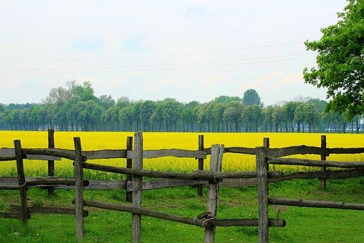 Fencing, The Fence, Landscape, Nature, Farm