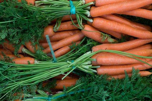 Food, Vegetables, Root, Pile, Fresh, Carrot, Orange