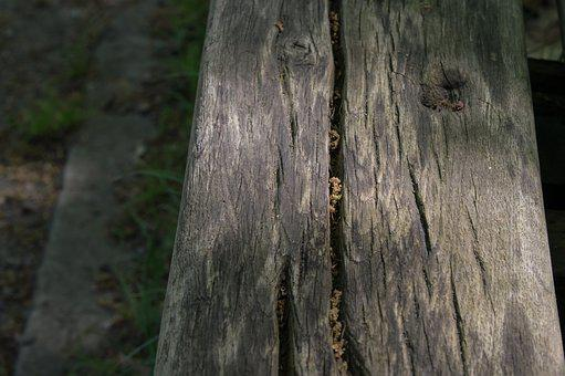Wood, Nature, Tree, Old, Background, Woods, Texture
