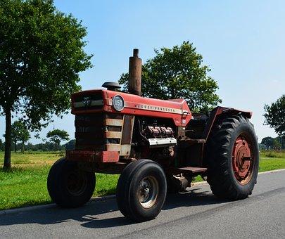 Tractor, Vehicle, Oldtimer, Massey Ferguson, Tractors