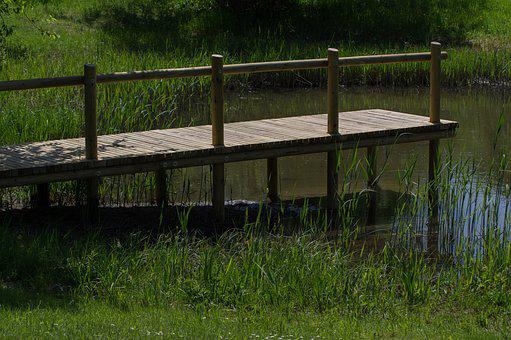 Grass, Web, Boardwalk, Wood, Fence, Nature, Rustic