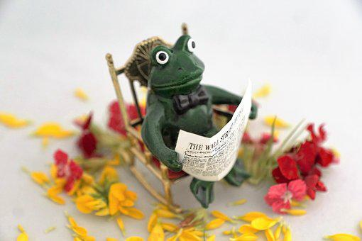 Flower, Background, Ornament, Color, Frog, Figure