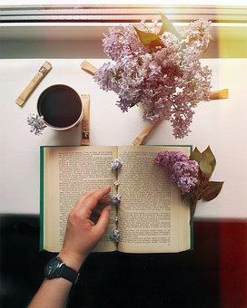 Flower, Background, Coffee