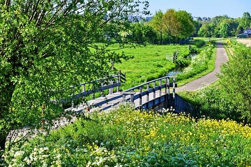 Landscape, Holland, Dutch Landscape, Polder, Meadow