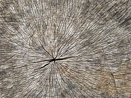 Wood, Log, Old, Annual Rings
