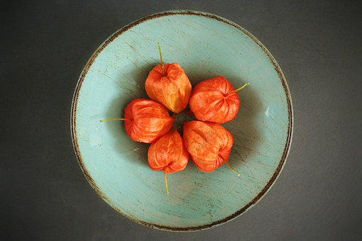 Physalis, Phýsalis, Plant, Vegetable, Berry, Decorative