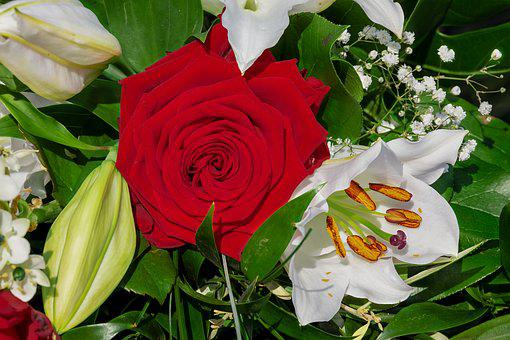Bouquet, Roses, Red, Lilies, White, Blossomed, Strauss