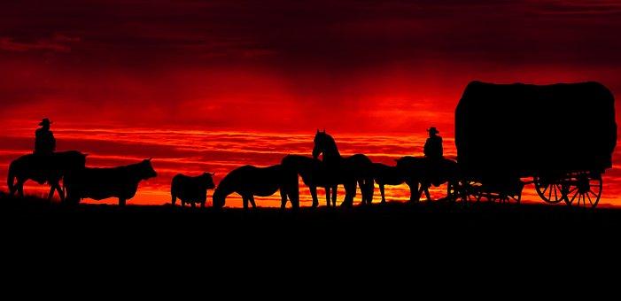 Sunset, Cut, Dawn, Panoramic, Twilight, Travel, Trolley