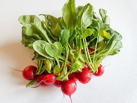 Healthy, Food, Leaf Plants, Vegetables, Salad, Radish