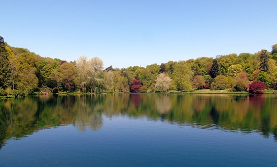 Lake, Trees, Tree, Reflection, Nature, Water, Forest