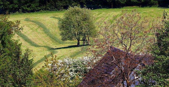 Landscape, Idyllic, Nature, Sunny, Summer, Atmospheric