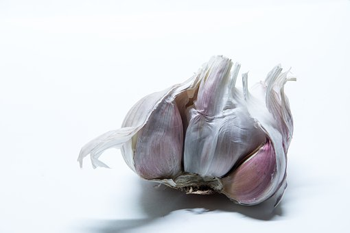Garlic, Tuber, Medicinal Plant, Cook, Spice