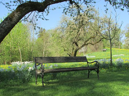 Park Bench, Park, Bank, Garden, Sit, Rest, Recovery