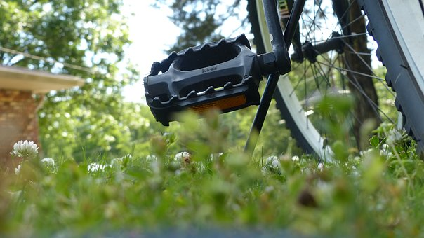 Bicycle, Bike, Wheel, Pedal, Outdoors, Grass, Nature