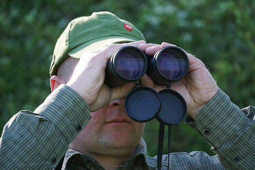 Hunter, Binoculars, Optics, Distant View