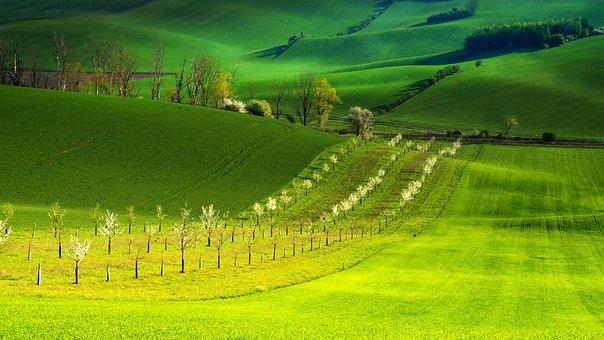 Moravia, South Moravia, Landscape, Spring, Biozones