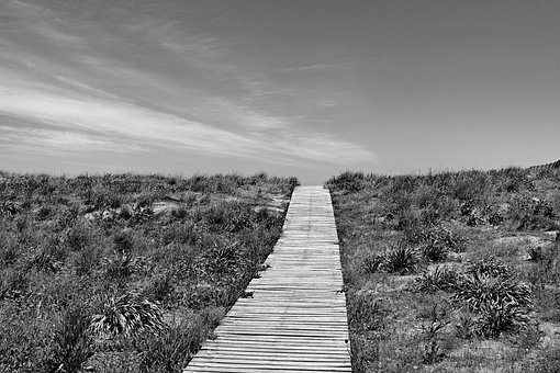 Boardwalk, Away, Horizon, Beach, Black And White, Sw