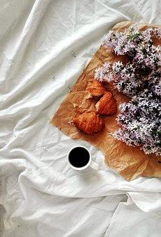 Lilac, Flowers, Plants, Breakfast, Coffee, Bed