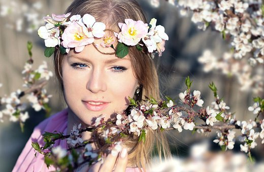 Spring, The Cherry Blossoms, Girl In A Wreath