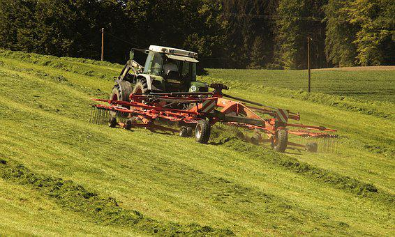 Tractor, Agriculture, Hay, Tractors, Vehicle