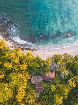 Aerial, Drone Shot, House, Villa, Palm, Trees, Tropical