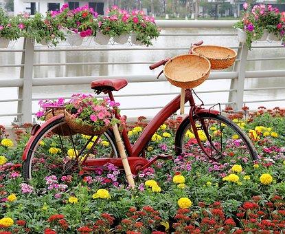 Viet Nam, Garden Design