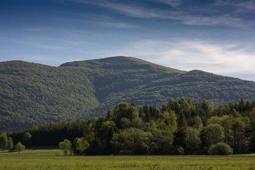 Bieszczady, Smerek, Nature, Tourism, Landscape, View