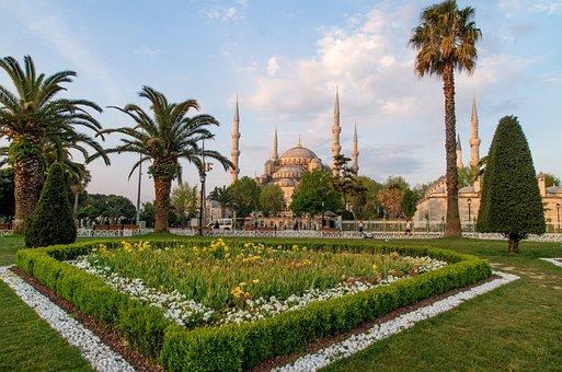 Blue Mosque, Mosque, Istanbul, Turkey, Garden, Heart