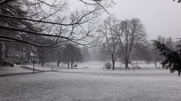 Park, Citizens Park, Winter
