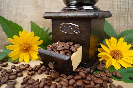 Coffee, Grinder, Coffee Beans, Caffeine, Grind, Drink